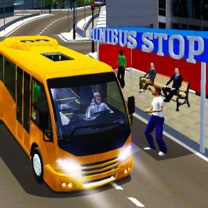 City Minibus Driver