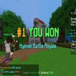 Minecraft Royale Battle